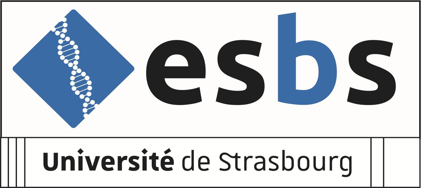 Logo ESBS